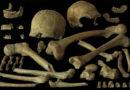 Die Analyse von Knochen aus Spy gab Aufschluss über Ernährung und Mobilität der dortigen Neandertaler.Foto: Royal Belgian Institute of Natural Sciences (RBINS)