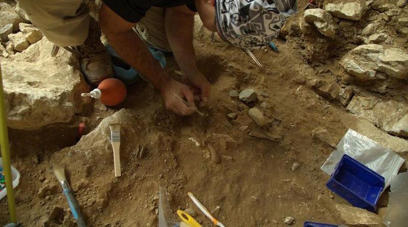 Ausgewandert - Sibirische Neandertaler stammten von verschiedenen europäischen Populationen ab