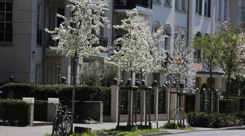 So, 9 Mai 2021: Corona-Wochen-News - Düsseldorf und NRW